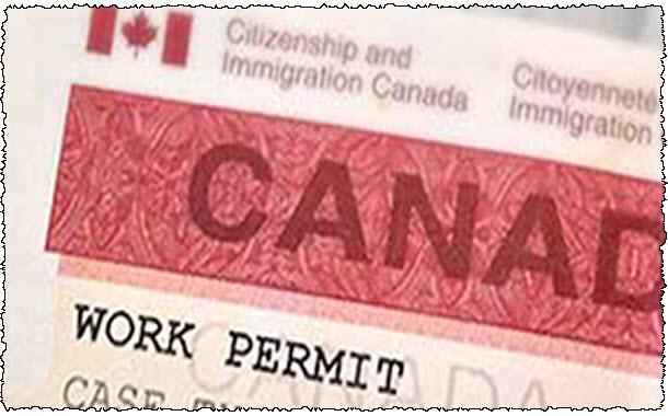 ویـزای کار کانادا: فرصتی مغتنم برای ورود به بازار کار بینالمللی